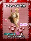 20110324012907191_20110406023650.jpg