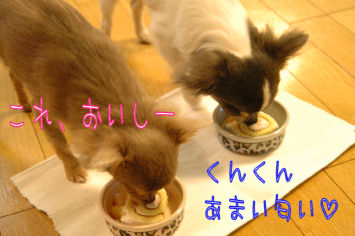 DSC_0249_20081229033229.jpg