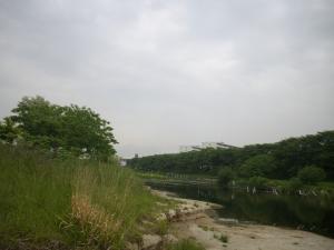 IMGP5969.jpg