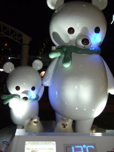 2008年12月20日 221
