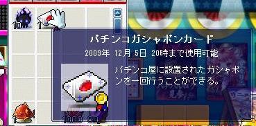 Maple090906_203301.jpg