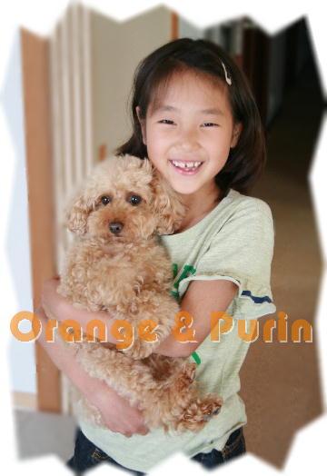 オレンジ&ぷりん2