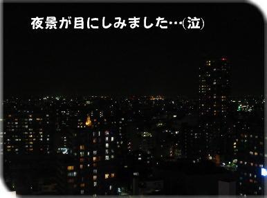 DSC06209a.jpg