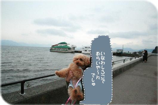 IMG_1300a.jpg