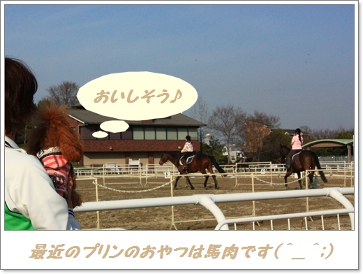 200,2,15 sakura cafe 鶴見緑地公園 120