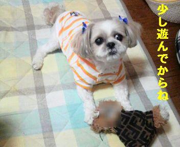 2009062011140001.jpg