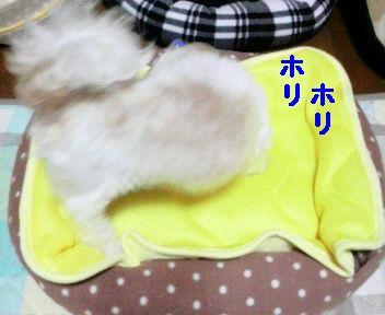 2009071521350001.jpg