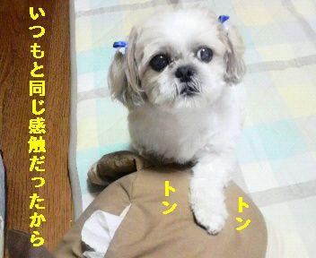 2009071800460000.jpg