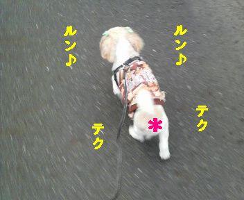 2009091017390000.jpg