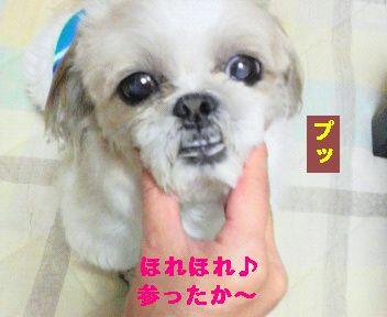 ぷ<br />っ