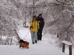 樹氷の中をトレッキング.JPG