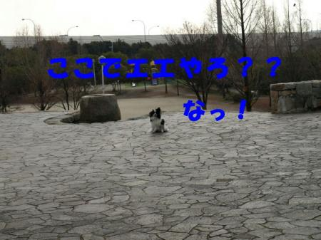 a21_20090124232740.jpg