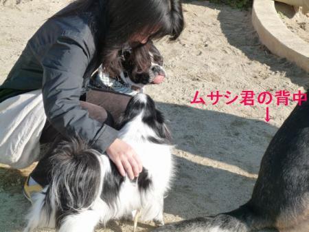 a9_20081220193411.jpg