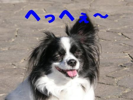 b2_20090219220940.jpg