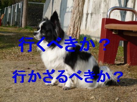 b5_20090211225330.jpg