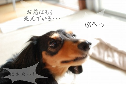 004_20111013130803.jpg