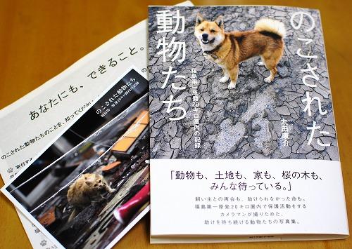 079_20111012110955.jpg