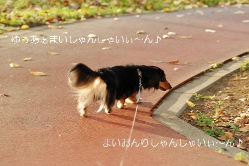 092_20110916100554.jpg