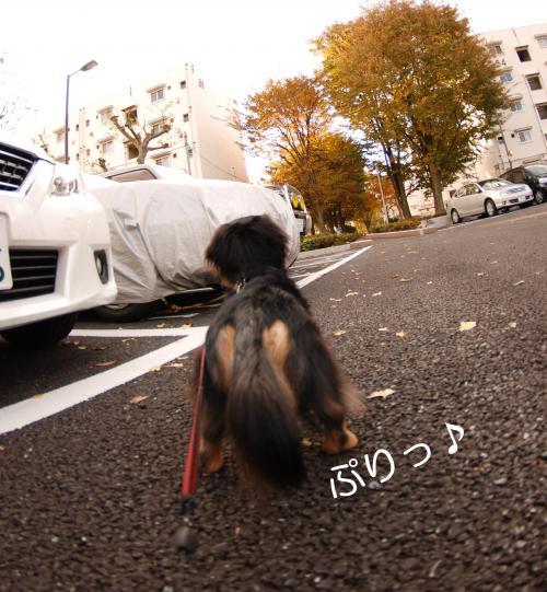 縺ュ_convert_20101121174836[1]