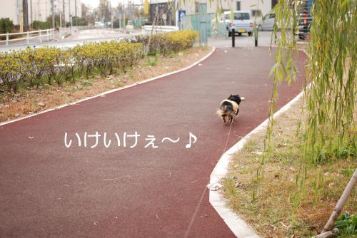 縺柔convert_20101219193835[1]