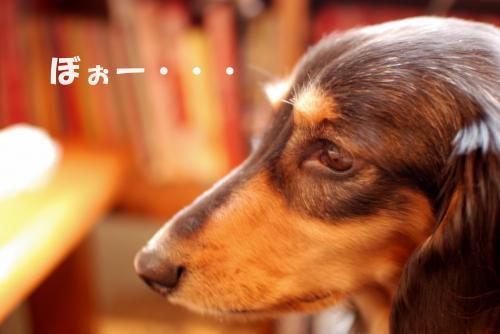繧祇convert_20110113091302[1]