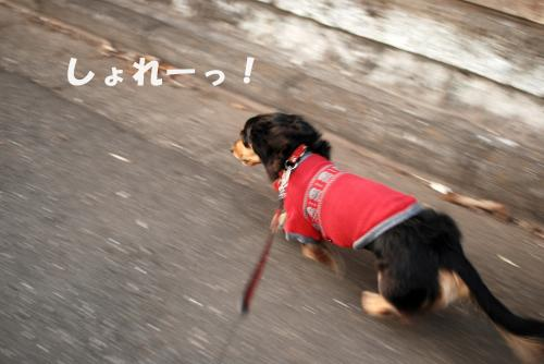 縺ォ_convert_20110115130417[1]