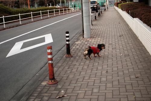 縺ャ_convert_20110115130701[1]