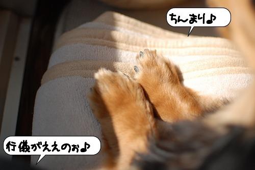 20110228_091531[1]