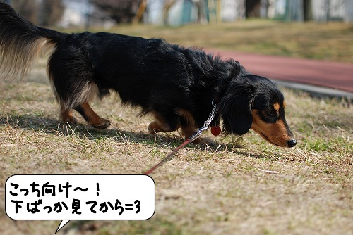 20110301_105245[1]
