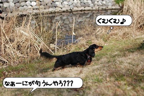 20110301_105715[1]