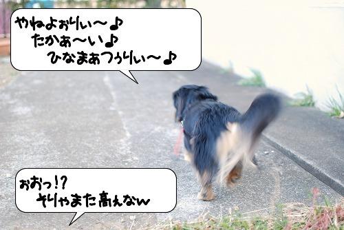 20110302_093757[1]