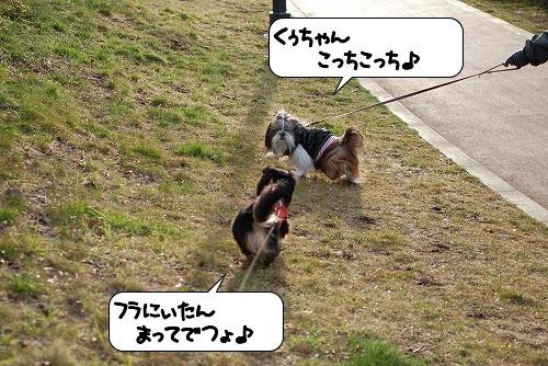20110310_093221[1]
