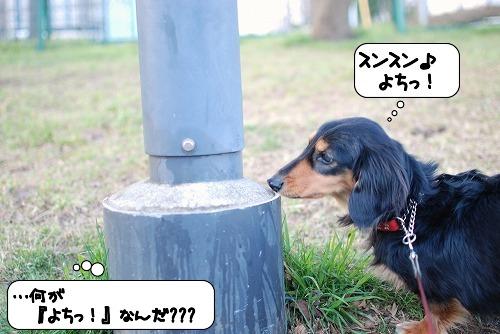 20110318_095652[1]
