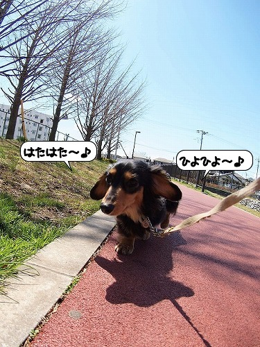 20110329_141139[1]