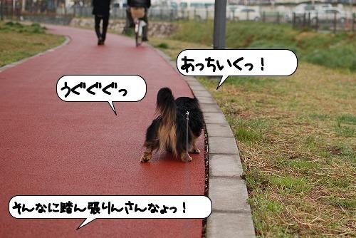 20110331_102300[1]