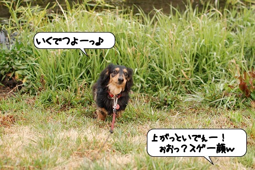 20110331_102452[1]