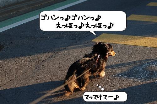 20110406_094625[1]