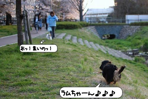 20110408_092914[1]