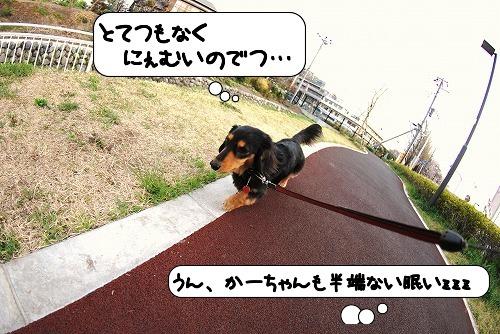 20110409_090520[1]
