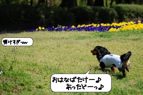 20110427_091951[1]