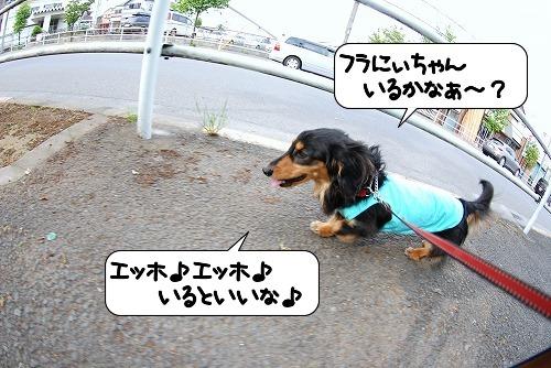 20110513_092315[1]