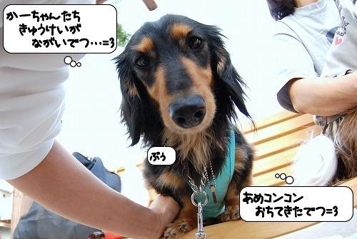 20110513_093634[1]