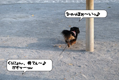20110521_104623[1]