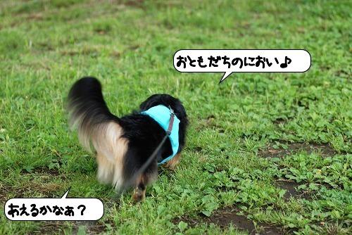 20110525_093348[1]