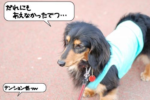 20110525_093522[1]