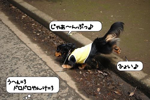 20110621_120007[1]