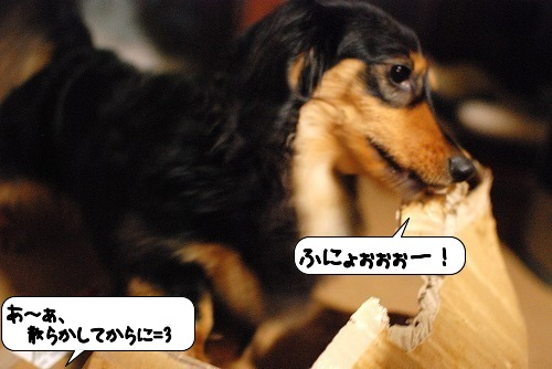 20110627_131507[1]