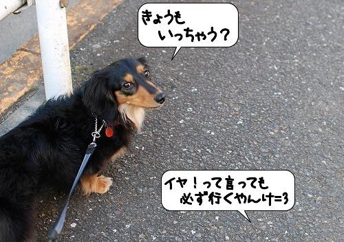 20110630_134057[1]
