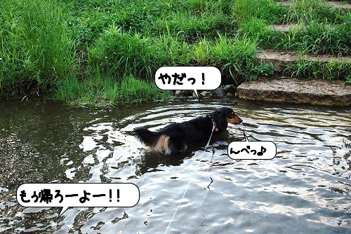 20110630_140816[1]