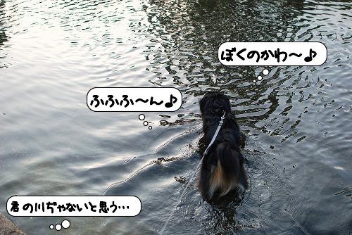20110630_135911[1]